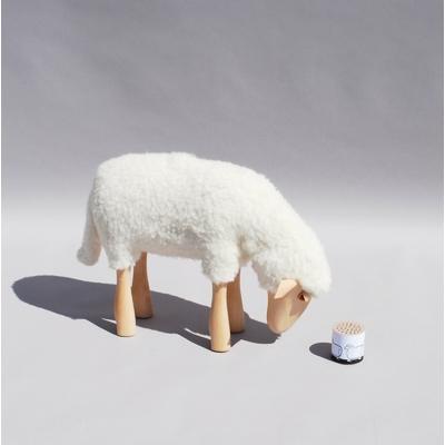 2772-mouton-blanc-qui-broute