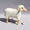 3968-mouton