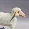 3969-mouton