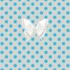 062013Epapillon