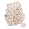 Lot de 3 valisettes carton - Petite Rose