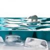 Bac à glaçons design Ours polaire bleu