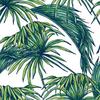Lé de papier peint - PDN1504102 - Collection Urban Jungle - Loti