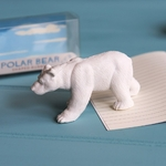 Grande gomme Ours polaire