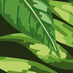 Lé de papier peint - PDN150491 - Collection Urban Jungle - Ahu Lani