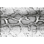 Tapis vinyle Peau de serpent tachée