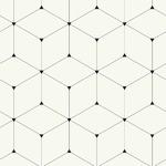 Rouleau de papier peint 10 mètres - PDNBOB1603001 – Mani