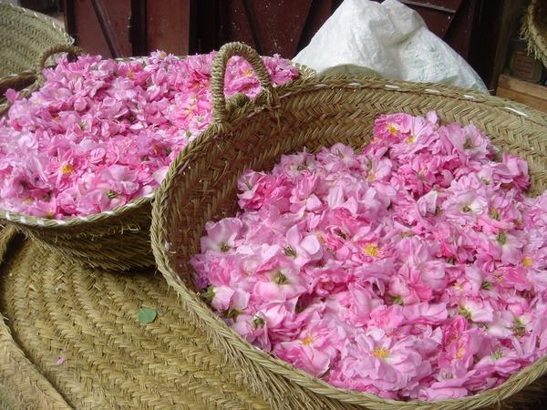 ROSES ARÔME ( 30 ml )