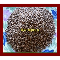 CORIANDRE GRAINES ( 50 g )