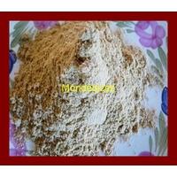 FENOUIL POUDRE ( 40 g )