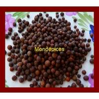 POIVRE NOIR  DE JAMAÏQUE   25 g ( piment de Jamaique )