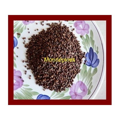 Maniguette graines 500 (Copier) (Copier) (Copier) (Copier)