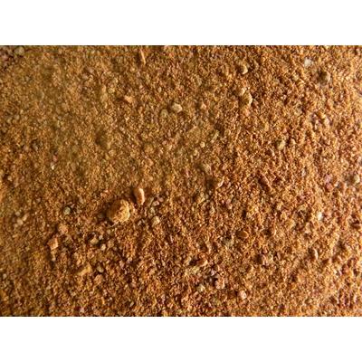 TOMATE SEMOULE 40 g