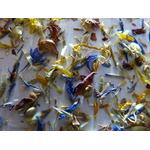 Salade de fleurs 11