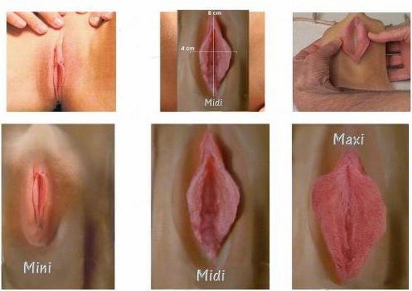Peut t obtenir le pénis dans le vagin