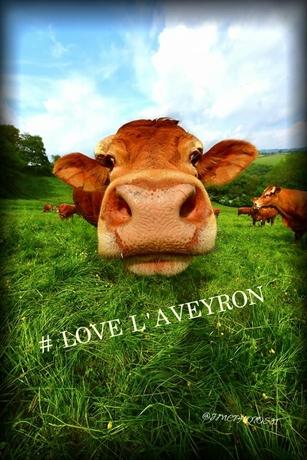 aveyron love