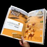 MondeArabe-des-enfants-Maghreb-machrek-desert-sahara-dromadaire-geko-serpent-oasis-palmeraie