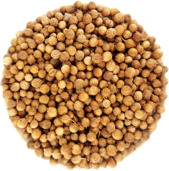 Graines de Coriandre Biologique Médicinale Soin Estomac et Troubles Digestifs
