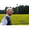 Thé Grillé Torréfié Japonais Houjisha Biologique Kirishima Jardin 2