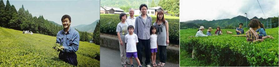 Petits Producteurs Thé Vert Japonais Biologique