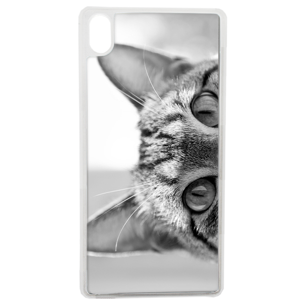 Coque Rigide Pour Apple Iphone Xs Motif Chat Gris Humour