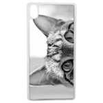 Coque Rigide Pour Apple Iphone Xr Motif Chat Gris Humour