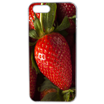 Coque Rigide Fraise Pour Apple Iphone 5 - 5s