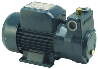 Groupe transfert fioul CKM 50 - ALI05006 - Delta Pumps