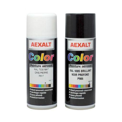 Peintures RAL 520ml (noir, blanc, jaune, rouge, bleu, vert, gris) AEXALT