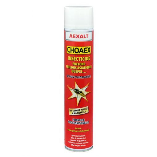 Insecticide guêpes et frelons CHOAEX Aexalt