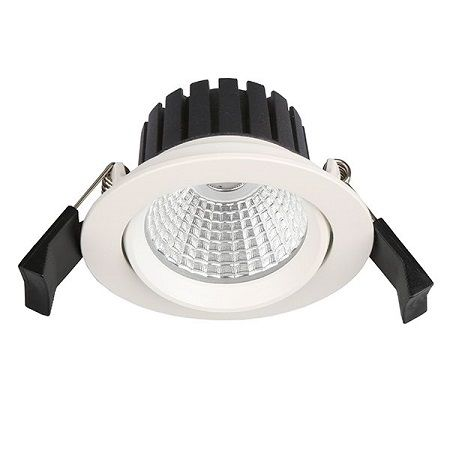 MiniRay CLAREO 5W Downlight LED Orientable Access