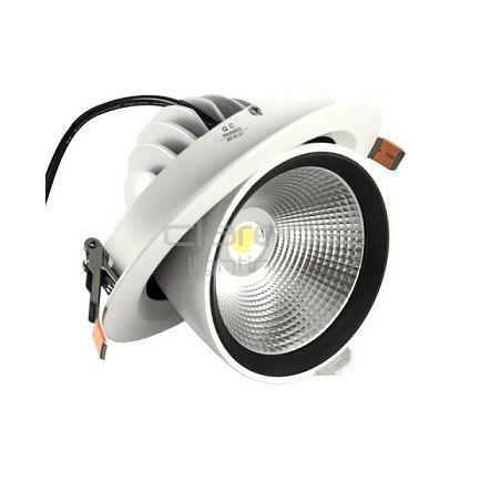 DownRay LED CLAREO Orientable 45W Access FS