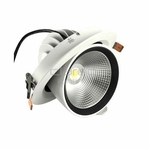 DownRay LED CLAREO Orientable 45W Access FS
