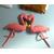 Scalaë flamingo saumon