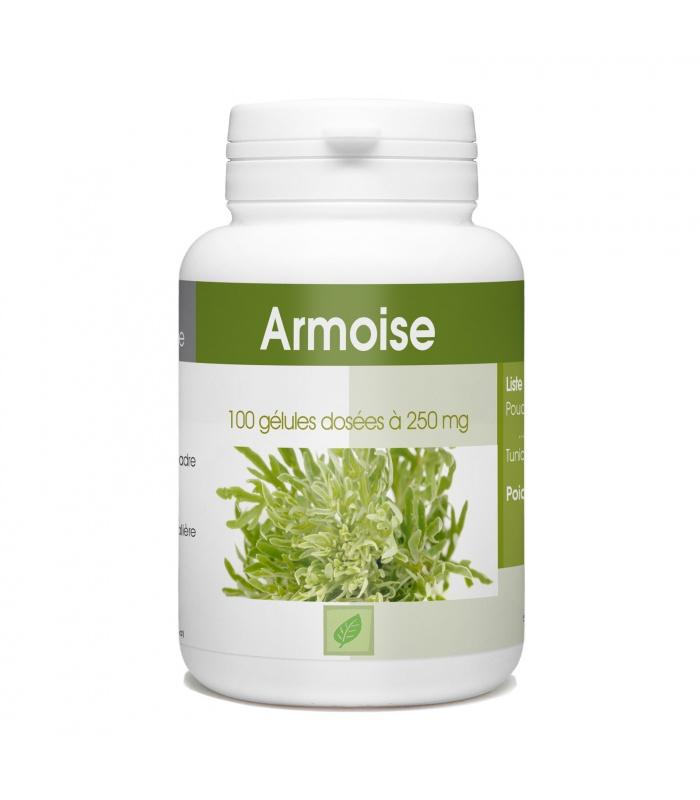 Armoise - 250 mg - 100 gélules Artemisia