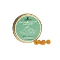Gommes protectrices des Pyrénées BIO - 30 g