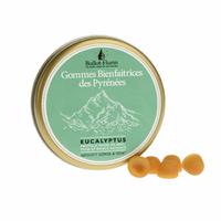 Gommes bienfaitrices des Pyrénées BIO - boîte 30 g