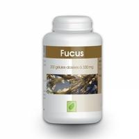Algue Fucus - 200 gelules