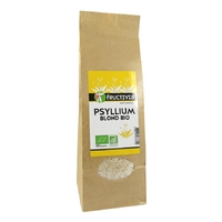 Psyllium blond bio Fructivia 200g