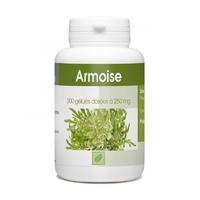 Armoise - 250 mg - 200 gélules Artemisia