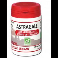 Astragale Bio 60 gelules