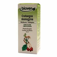 Aubépine - Crataegus Monogyna BIO - 50 ml Teinture - Extrait Plante Fraiche Bio