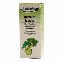 Houblon - Humulus Lupulus BIO - 50 ml Teinture – Extrait Plante Fraiche Bio