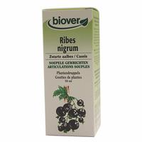 Cassis - Ribes Nigrum BIO - 50 ml Teinture - Extrait Plante Fraiche Bio