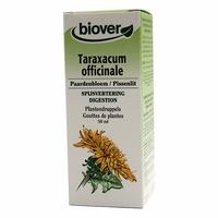 Pissenlit - Taraxacum Officinalis BIO - 50 ml Teinture – Extrait Plante Fraiche Bio