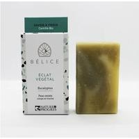 Savon à froid BIO ECLAT VEGETAL Eucalyptus 100g Nature et progres