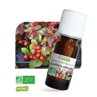 Gaulthérie Odorante BIO - Huile essentielle 10 ml