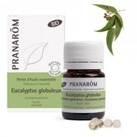 Eucalyptus globuleux BIO - 60 PERLES Feuille