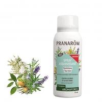 Spray assainissant BIO 75 ml Ravintsara - Tea tree - Contre les virus et les bactéries