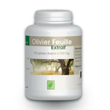 Olivier (extrait 7%) 500 mg 100 gelules - Complément..
